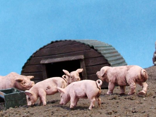 pvw010-pig-shed